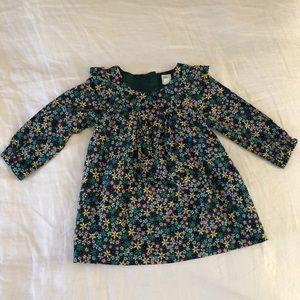 Blue/green floral long-sleeve babygap dress